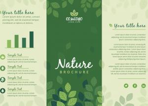 triptico-para-tienda-ecologica