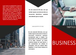 Triptico-business-Rojo